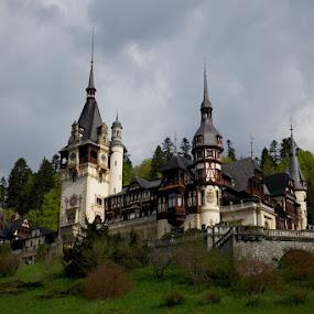 Peles Castle Sinaia, Romania by Aurel Virlan - Buildings & Architecture Other Exteriors ( romania, peles sinaia, exterior castle, royal castles )