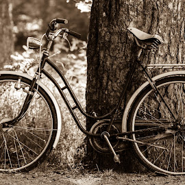 Old one by Hans Petter Back-Mannsverk - Transportation Bicycles ( old, sepia, summer, norway, bicycle )