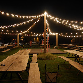 Stringing the Lights by Patty Mo - Wedding Reception ( lights, patricia maureen photography, white lights, wedding, wedding lights, wedding reception, stringing the lights, wedding bells, pmp, patty mo, mood factory, color, lighting, moods, colorful, light, bulbs, mood-lites )