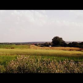 by Joanna Borkowska - Novices Only Landscapes