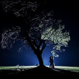 Night Tree by Lodewyk W Goosen (LWG Photo) - Wedding Bride & Groom ( wedding photography, wedding photographers, wedding day, weddings, wedding, bride and groom, wedding photographer, bride, groom, bride groom )