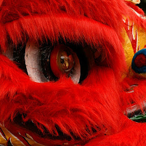 the Eye by Willy Aprillianto - Artistic Objects Clothing & Accessories ( red, barongsay, culture, eye )