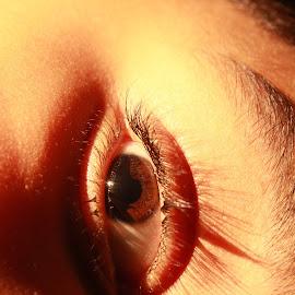 the golden eye by Shalini Jain - People Body Parts ( child, summer morning, son, closeup, sun, eye )