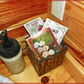 Bathroom Decor by Sandy Stevens Krassinger - Buildings & Architecture Other Interior ( soap pump, bathroom interior, tongue and groove, seed packets, decorations )