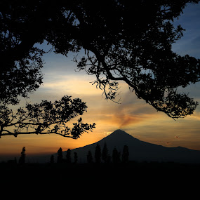 Sunset and trees by Cristobal Garciaferro Rubio - Nature Up Close Trees & Bushes ( volcano, mexico, popocatepetl, trees, smoking volcano )