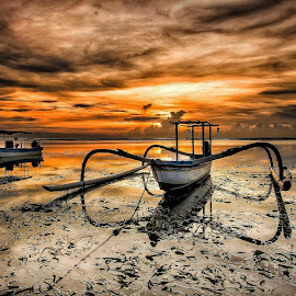 Sunrise  by Bobo Tandiono - Transportation Boats ( boat. seaweed. .cloudy. reflection. )