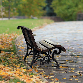 Autumn by Sergey Sokolov - City,  Street & Park  City Parks ( cityscapes, benches, fall colors, park, bench, autumn, fall, architecture, fallen leaves, leaves, city, hisarya,  )