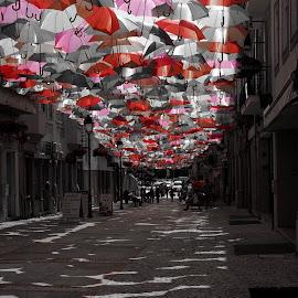 by José António Duarte Moura - City,  Street & Park  Neighborhoods