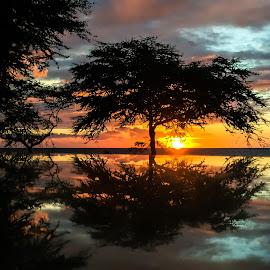 Sunset reflection. by Mary Elizabeth McGlynn - Landscapes Sunsets & Sunrises