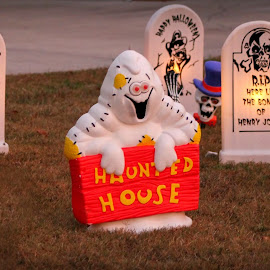 Ghost by Karen Carter Goforth - Public Holidays Halloween ( decor, lawn, ghost, halloween,  )