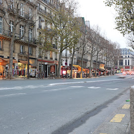 Paris by Eurico David - City,  Street & Park  Historic Districts