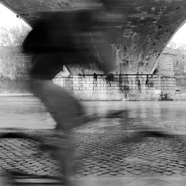 Cicliista sotto il ponte Garibaldi by Emanuele Dini - Transportation Bicycles ( roma, ponte, bicicletta, ciclista, lungotevere, street )