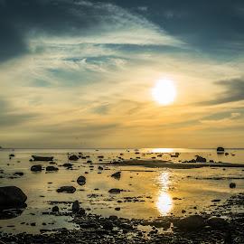 sunset by Maksim Kozlov - Landscapes Waterscapes ( port, cabin, harbor, wood, silhouette, ship, ocean, rock, travel, cruise, sun, schooner, baltic, sailor, gull, sky, drawbridge, tide, sail, crowd, maritime, tall, tallinn, water, estonia, marine, wind, vessel, stern, sea, deckhand, docks, boat, sailboat, bird, sunset, sundown, sunrise, bridge, liner, navy, nautical )