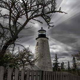 New England Lighthouse by Ruth Sano - Buildings & Architecture Public & Historical ( maine, black and white, lighthouse, landscape )