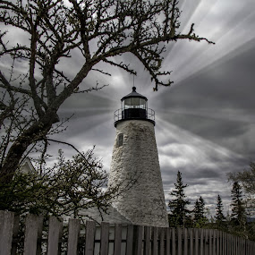 New England Lighthouse by Ruth Sano - Buildings & Architecture Public & Historical ( maine, black and white, lighthouse, landscape,  )