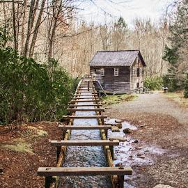 Mill Run by Richard Michael Lingo - Buildings & Architecture Public & Historical ( mingus mill, historical, mill run, building, mill )