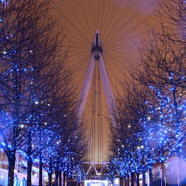 The London Eye by Peter Salmon - City,  Street & Park  Night
