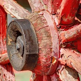 Wagon wheel by Joe Machuta - Transportation Other