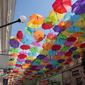 Umbrelas by Tipa Marius - City,  Street & Park  Street Scenes