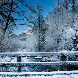 Winter from the Bridge by Ken Wade - Landscapes Weather ( stream, winter, snow, carbon river, bridge )