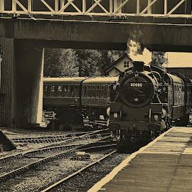 Enter  80080 by Gordon Simpson - Transportation Trains