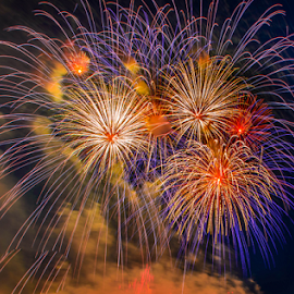 Celebration Is On by Joseph Law - Public Holidays July 4th