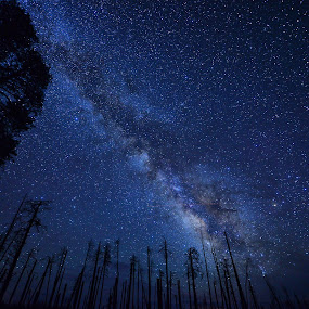 by Amy Ann - Landscapes Starscapes (  )