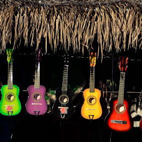 by Rany Haj - Artistic Objects Musical Instruments