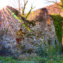 Old Istrian house in ruins by Simon Olup - Buildings & Architecture Decaying & Abandoned ( istra, ruin, slovenia, decay house, abandoned house )