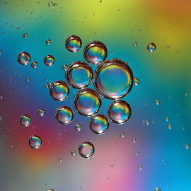 Floating Drops by Janet Herman - Abstract Macro ( abstract, oil and water, oil drops, macro, colors, floating, reflections )