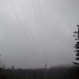 Време by Georgi Kolev - Novices Only Landscapes ( есен., мъгла., време., тишина., дървета. )