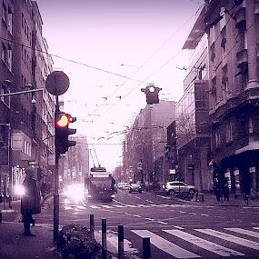 Belgrade street Takovska by Vesna S. Disić - City,  Street & Park  Street Scenes ( detail, sepia, belgrade, serbia, beograd, town, srbija. artistic )