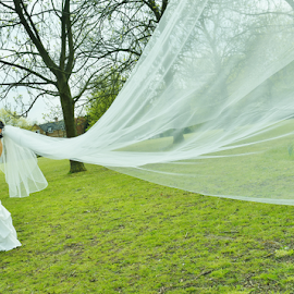 Bride and Groom by Vineet Johri - Wedding Bride & Groom ( vkumar photography, vale, bride dress, marriage, long vale, bride groom )
