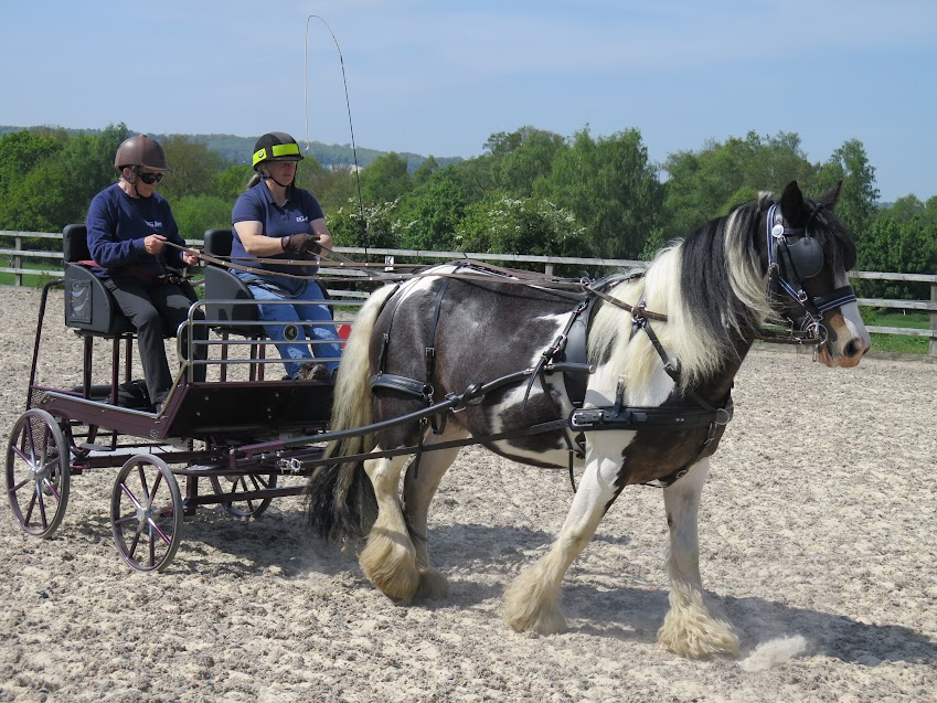 Carriage driving at Bradbourne RDA