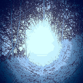 Into the light by Karen McGregor - Digital Art Things
