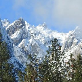 Powdered Sugar... by Sherry Gardner - Landscapes Mountains & Hills ( castle crags state park, camping, battle rock joanquin miller, hiking,  )