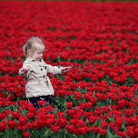 On tiptoe by Bencik Juraj - Babies & Children Children Candids ( child, child portrait, garden, flower )