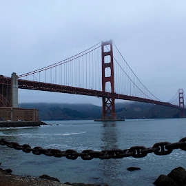Golden Gate Bridge by Steve Mourgos - Buildings & Architecture Bridges & Suspended Structures