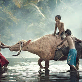 by Nicholas Wibowo - Babies & Children Children Candids ( kids in the summer )