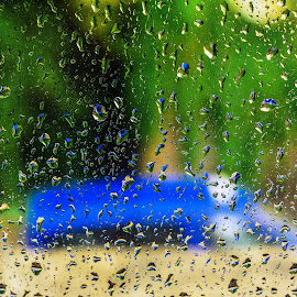 taxi in the rain by Mihai Catalin - Nature Up Close Water