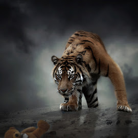 Prey by Anthony Wood - Digital Art Animals ( teddy bear, tiger, hunting, composite )