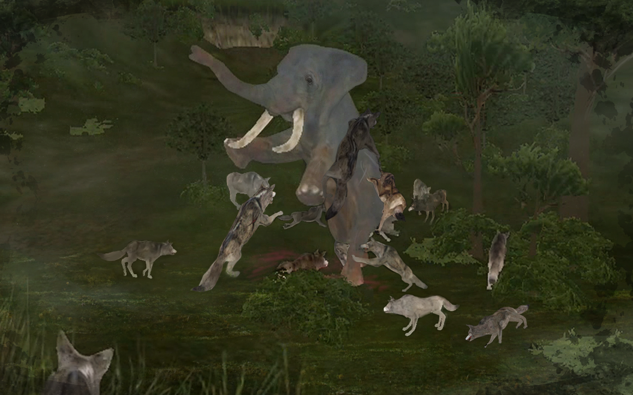Wild Animals Online(WAO) Screenshot 2