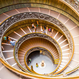 Vatican Museum by Photoxor AU - Buildings & Architecture Architectural Detail ( staircase, spiral, architecture, museum, vatican )