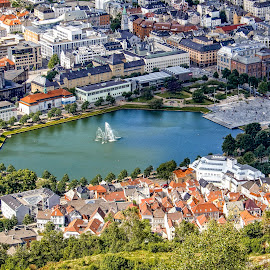Lille Lungegaardsvannet by Richard Michael Lingo - City,  Street & Park  Vistas ( city, norway, vista, park, bergen )