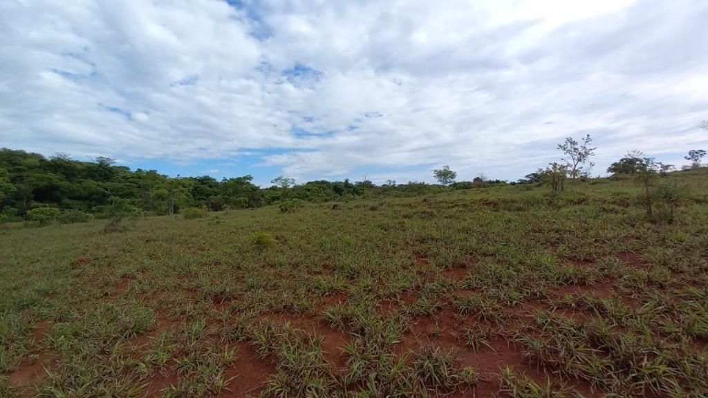 Fazenda à venda, 629200 m² por R$ 1.200.000,00 - Zona Rural - Perdizes/MG