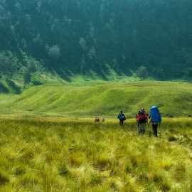 The Journey by Faldhy Boer - Landscapes Travel ( mahameru, semeru, renewal, green, trees, forests, nature, natural, scenic, relaxing, meditation, the mood factory, mood, emotions, jade, revive, inspirational, earthly )