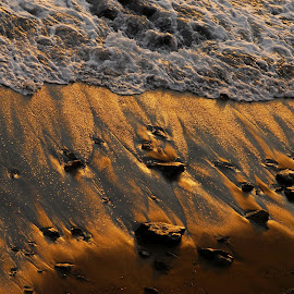 Liquid gold by Simona Serdiuc - Nature Up Close Sand ( glittery gold, sand, sparkles, sparkling, seascape, beach, sparkle, gold, coast, golden light, golden hour )