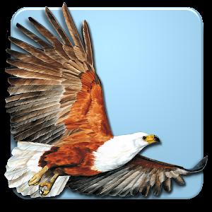 Roberts Multimedia Birds of SA For PC (Windows & MAC)