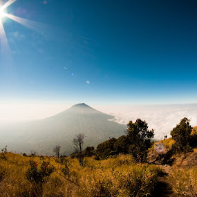 Selimut Awan by Andri  Suanto - Landscapes Mountains & Hills ( sumbing, mountain, sky, sabana, java, sindoro, sun )