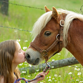 Lips to whiskers by Giselle Pierce - Babies & Children Children Candids ( miniature horse, child, fild, little girl, friends, girl, horse, children, flowers, kid )